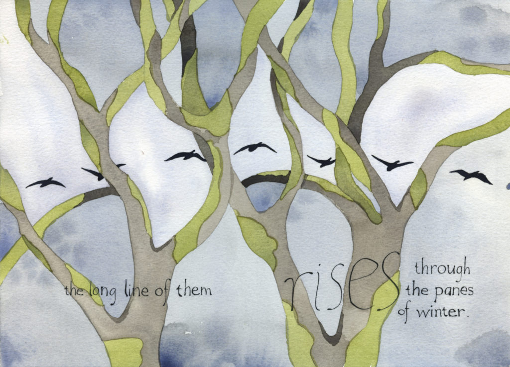 "Geese flying seen through the branches of winter oaks: pages 5 and 6 of ""In the Slough"" an illustrated watercolor poem by artist Alexandra Schaefers. Handwritten text reads: the long line of them rises through the panes of winter."