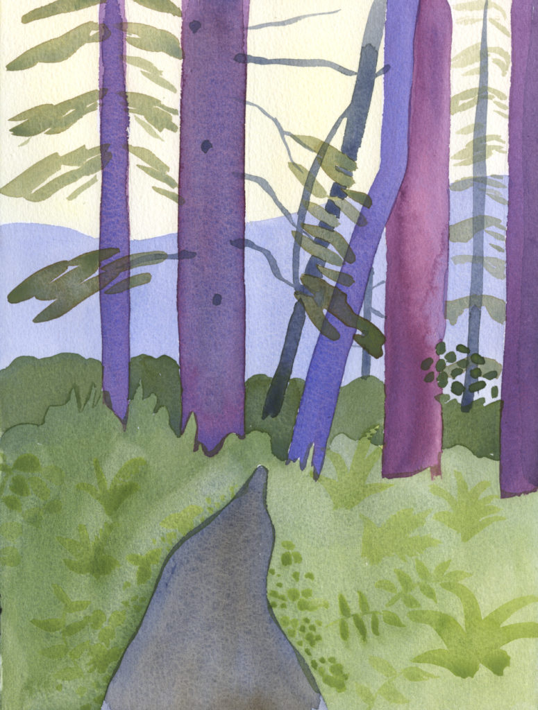 watercolor forest painting from Upper MacCleay Trail by Alexandra Schaefers