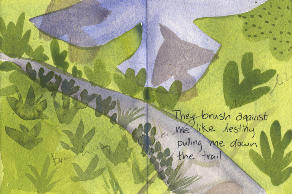"book pages with painted bird and leaf shapes along a trail. Handwritten text reads, ""They brush against me like destiny pulling me down the trail."""