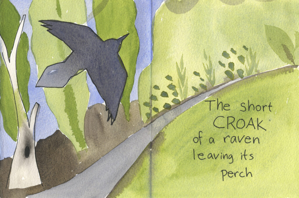 "Book pages with painted raven and trees along a trail. Handwritten text reads, ""The short croak of a raven leaving its perch."""