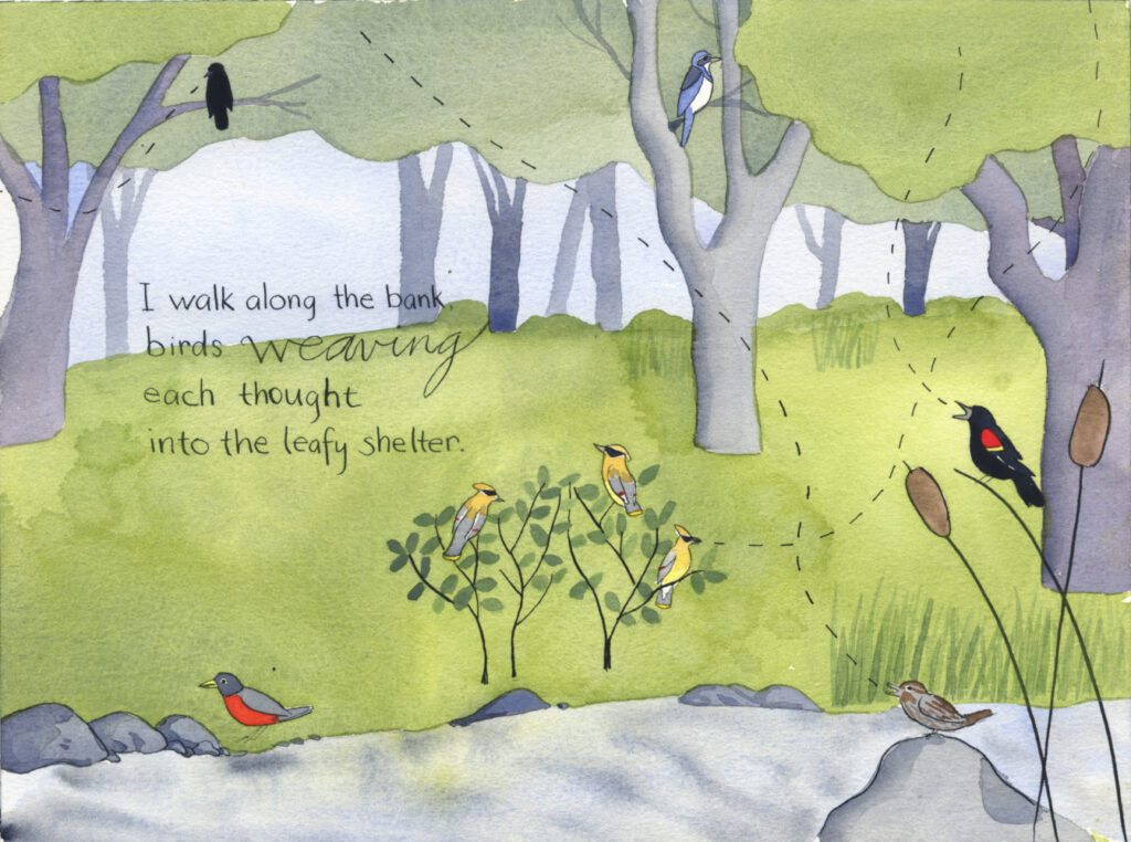 "book pages, illustration of a creek in a wooded area with an American crow and scrub jay in the trees, cedar waxwings in a bush, American robin on the ground, song sparrow on a rock and a red-winged blackbird on a cattail. Handwritten text reads, ""I walk along the bank, birds weaving each though into the leafy shelter."""