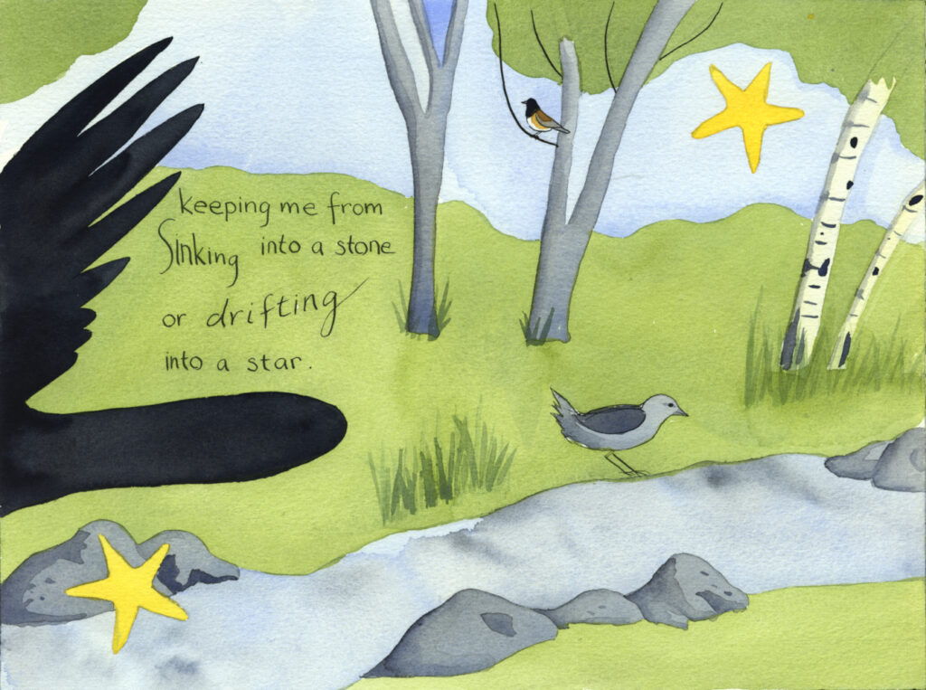 "book pages with illustration of a creeek in a wooded area with an American Dipper by the bank, a dark-eyed junco in a tree and a crow sailing past. Handwritten text reads, ""keeping me from sinking into a stone or drifting into a star."""