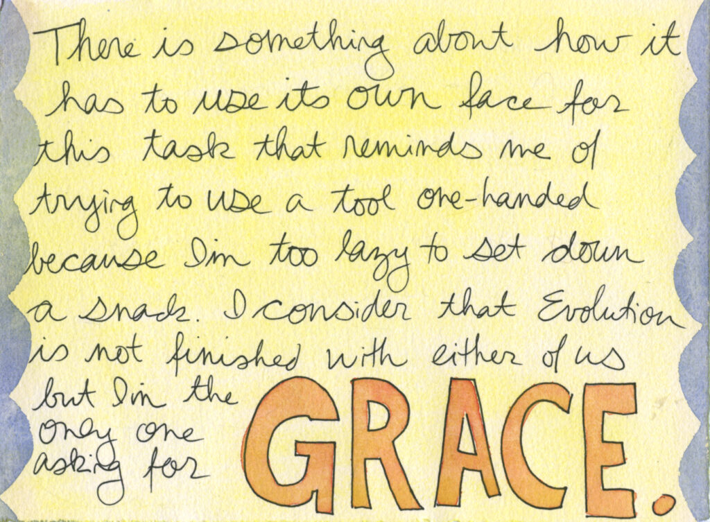 "Handwritten text reads, ""There is something about how it has to use its own face for this task that reminds me of trying to use a tool one-handed because I'm too lazy to set down a snack. I consider that evolution is not finished with either of us but I'm the only one wishing for grace."""