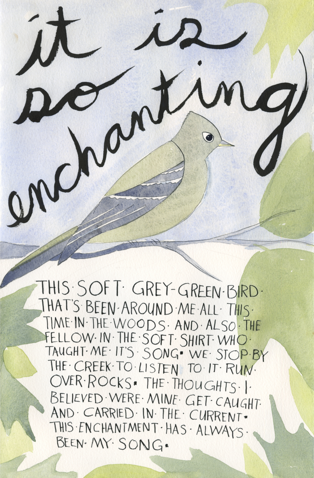 "illustration of a flycatcher. Handwritten text reads ""It's so enchanting— this soft grey-green bird that's been around me in the woods all this time. And also, the fellow in the soft shirt who taught me its song.  We stop by the creek to listen to it run over the rocks. The thoughts I believed were mine get caught and carried in the current. This enchantment has always been my song."""