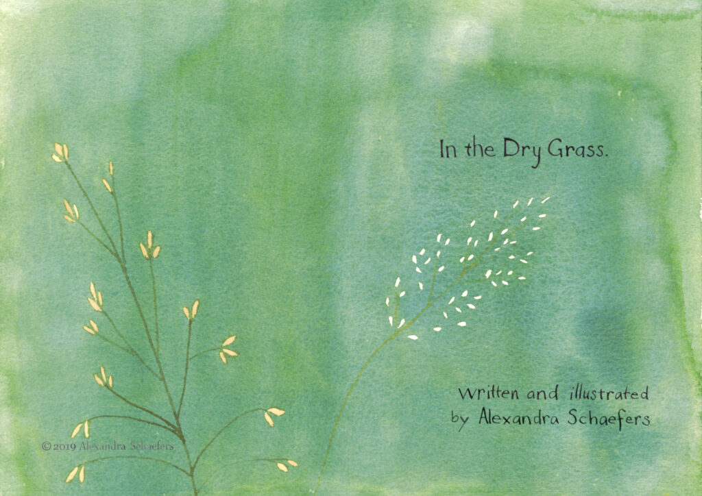 "Title page of ""In the Dry Grass"" written and illustrated by Alexandra Schaefers. Watercolor illustrations of meadow grasses on a green background."