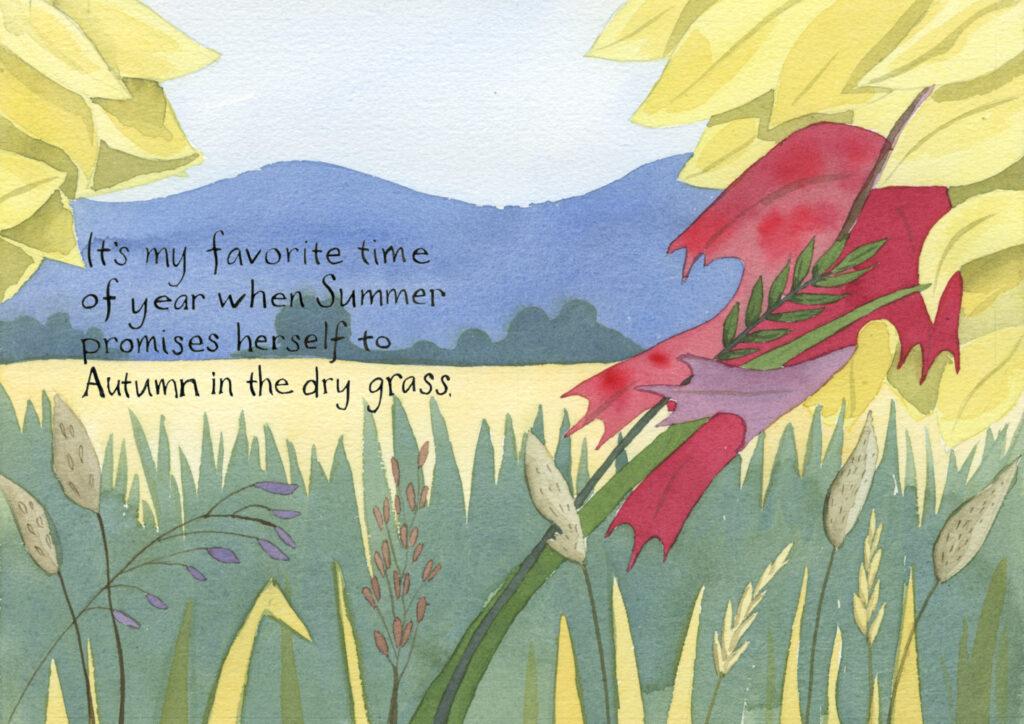 "Watercolor illustration of meadow grasses and yellow leaves, one red oak leaf embraces a long green stalk of meadow grass. Handwritten text reads: ""It's my favorite time of year when Summer promises herself to Autumn in the dry grass."""