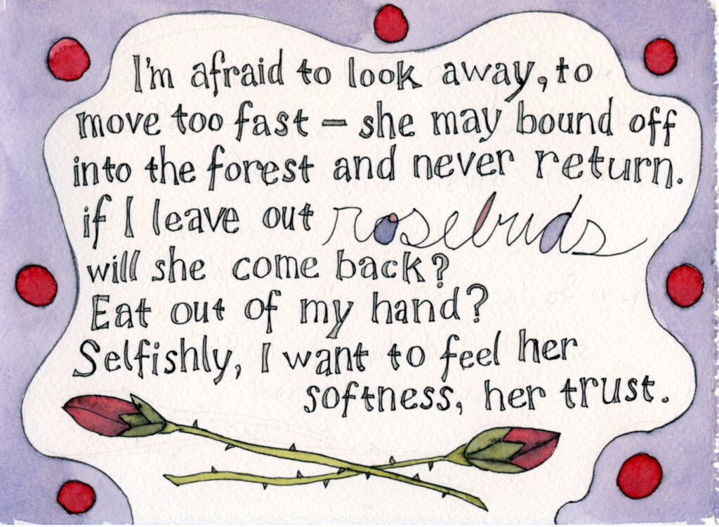 "handwritten text reads""I'm afraid to look away, to move too fast--she may bound off into the forest and never return. If I leave out rosebuds will she come back? Eat out of my hand? Selfishly, I want to feel her softness, her trust."" below is an illustration in watercolor of rosebuds there is a purple border with red dots in it"