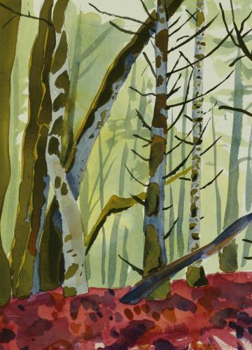 Woodland and Forest Paintings