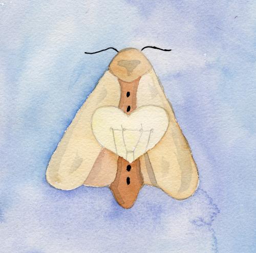 Considering Moths