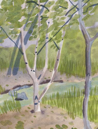 Dixon Creek