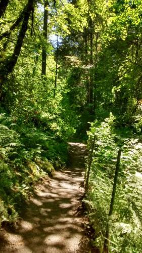 Woods Memorial
