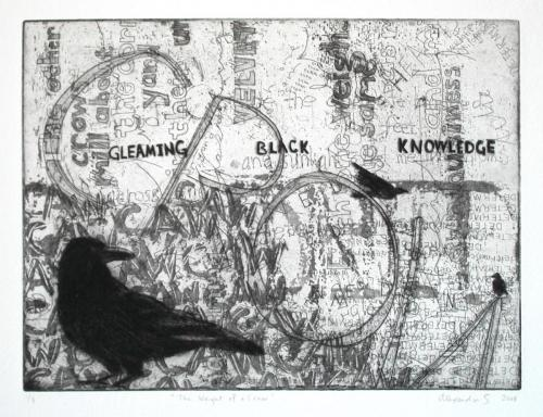 Weight of a Crow- Alexandra Schaefers