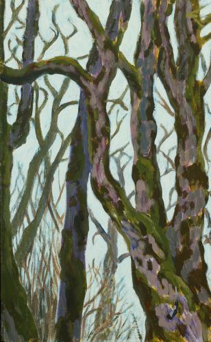 Oaks of Stewart Slough